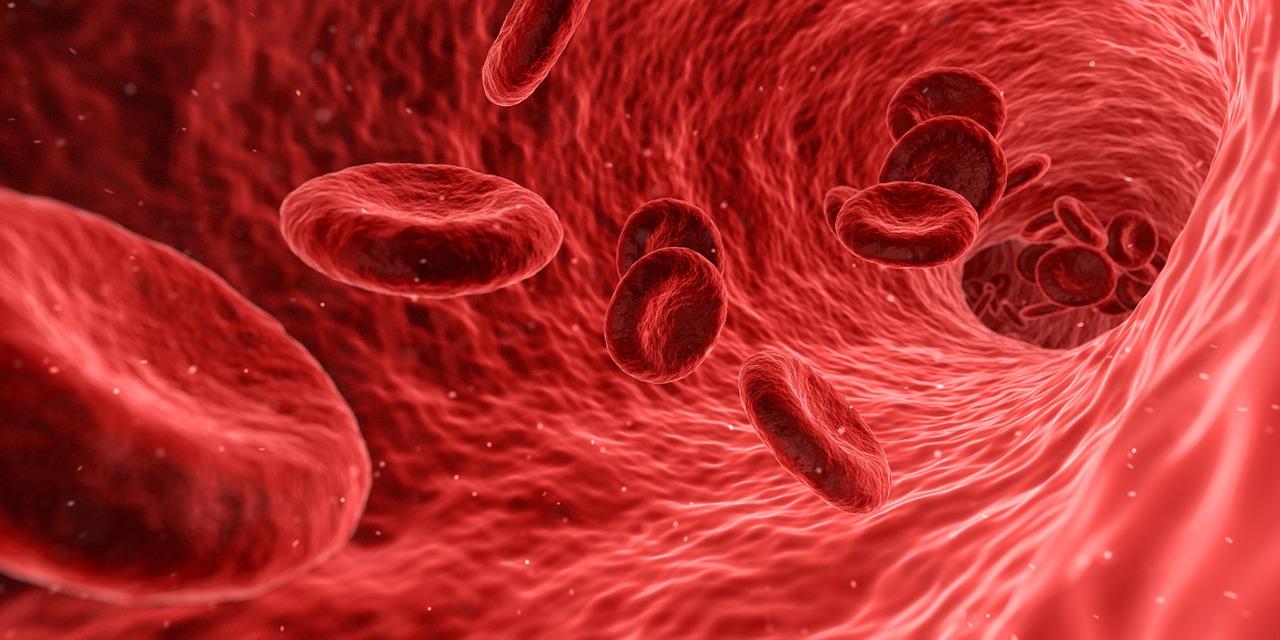 高脂血症での医療保険加入について