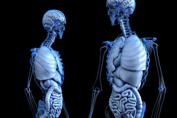 肺気胸の保険加入について