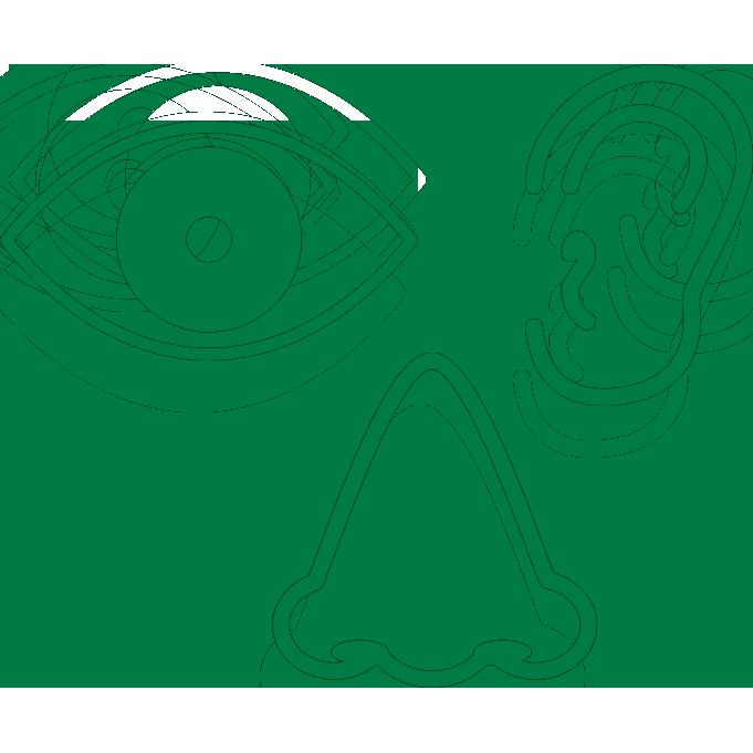 目・耳・鼻の病気